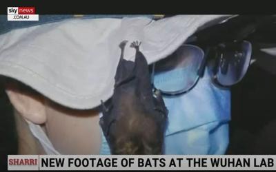 Βίντεο δείχνει ζωντανές νυχτερίδες στο εργαστήριο της Ουχάν – Νέες θεωρίες για την προέλευση του κορονοϊού