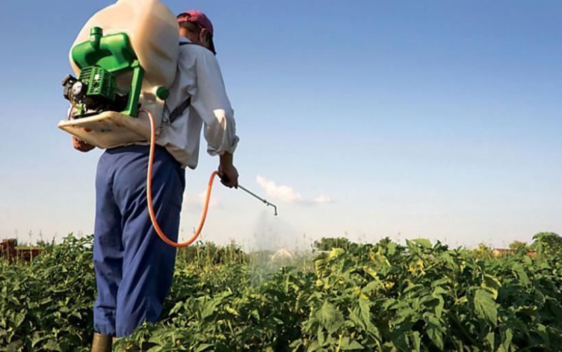 Π.Ε. Μαγνησίας: Ενημέρωση επαγγελματιών χρηστών σχετικά με τη συνταγή χρήσης γεωργικών φαρμάκων