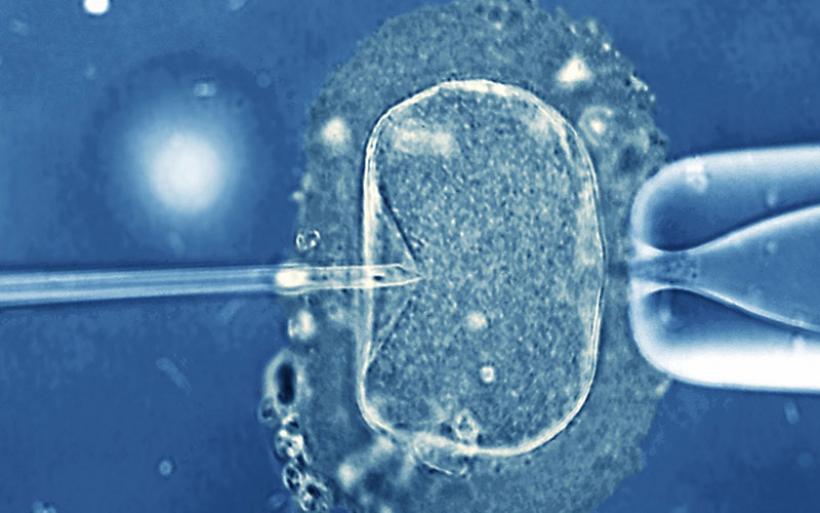 IVF: Από τους πιο φιλελεύθερους ο ελληνικός νόμος