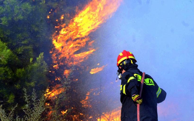 Μέση επικινδυνότητα για πυρκαγιά την Τετάρτη στη Μαγνησία