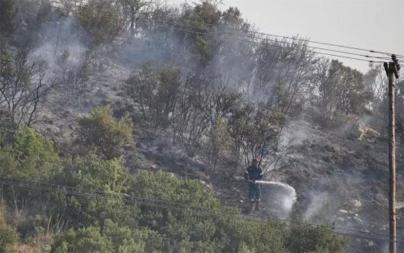 Κάηκαν 650 στρ. από τη μεγάλη πυρκαγιά στην Πέρδικα Αλμυρού